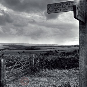 South Downs Way Peter Lacey Stephen Kalinich (5)